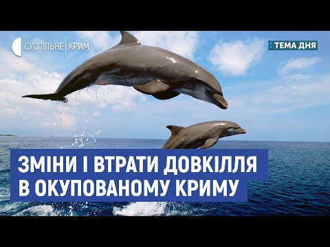 Зміни і втрати довкілля в Криму | Тема дня | Євгеній Ярошенко