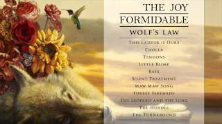 The Joy Formidable - Silent Treatment [Official Audio from Wolf's Law]