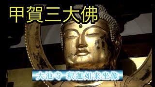 【くの一みかんの忍☆散歩】忍者朱印帳 大池寺