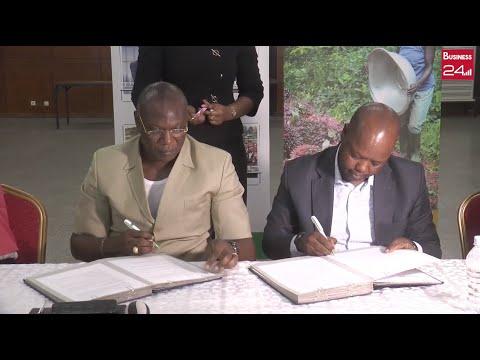 UNACOOPEC-CI et l'ONG Solidaridad signent un partenariat UNACOOPEC-CI et l'ONG Solidaridad signent un partenariat