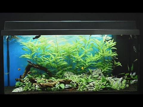Juwel Primo 110 Led aquarium