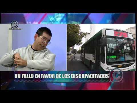 Discapacitados: Un fallo judicial ejemplar le pone los puntos a las líneas de colectivos que circulan en La Plata, Berisso y Ensenada