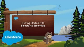 How to Set Up Salesforce Knowledge?