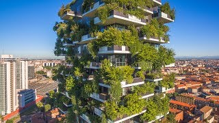 Green Spaces in Building Architecture: History and Innovations