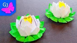 Оригами из бумаги Цветок Лотос.
