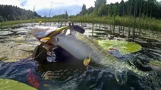 Отдых с охотой рыбалкой в беларуси