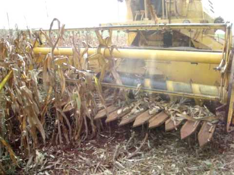 Clayson 1530 colhendo milho, Nova Ramada-RS...janeiro de 2009....by Tiago Tamiozzo