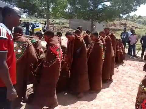 Makoloane Qacha