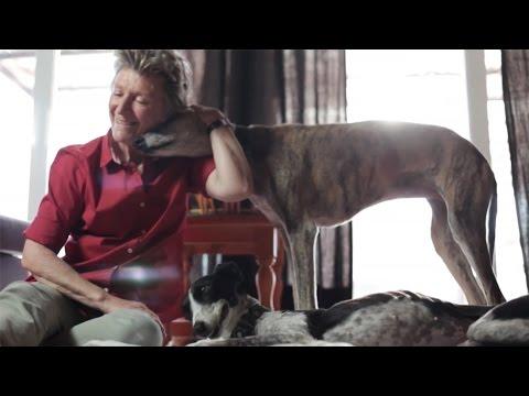 Imagen del vídeo 'Galgos y familias'