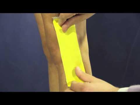 Cervicale anatomia della colonna vertebrale di nervi