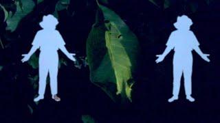 """John Moods – """"Meet Me In My Dreams"""""""