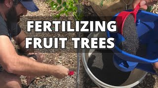 How and When to Fertilize Fruit Trees - Back Yard Orchard