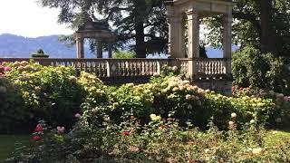 スイス発 美しいメッケンホルン城【スイス情報.com】