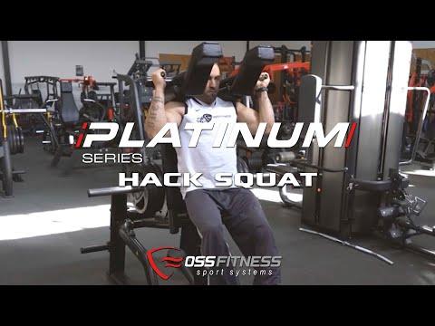 Press leg hack squat
