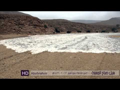 سيل يوم الجمعة في حوطة بني تميم 21 – 1 – 2011 HD