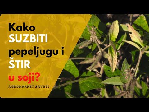 Zaštita soje - pre em (Herbicid: MAX 51)