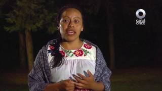 Entrevista - Rocío Sabino