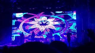 Tame Impala Live @ Chicago Pitchfork Festival | Love/Paranoia - Currents