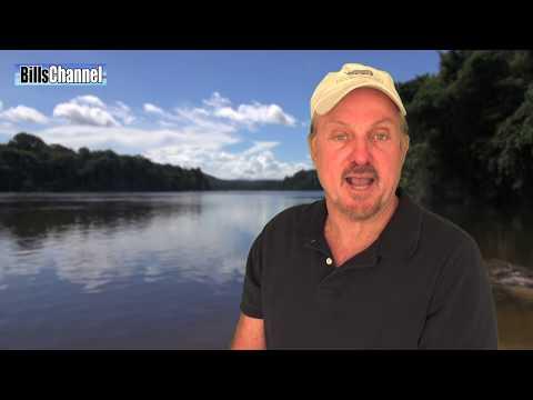 Download ANACONDA Vs DIVER - Amazon River Monsters HD Mp4 3GP Video and MP3