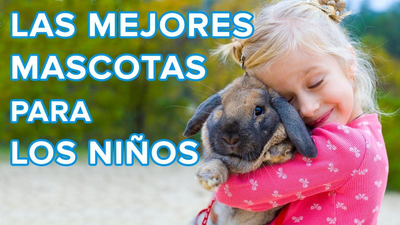 Cuál es la mejor mascota para los niños | Cómo elegir bien a tu animal de compañía ????????????