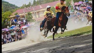Chung kết và trao giải đua ngựa Bắc Hà 2016
