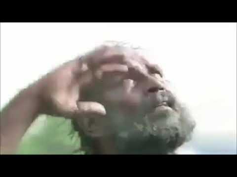 Jhennifer bento fernandes