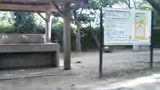そうか公園 キャンプ場のイメージ