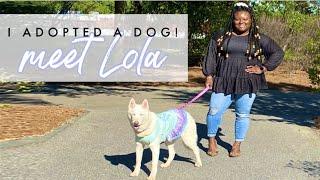 I Adopted A DOG😱 Meet Lola 💗