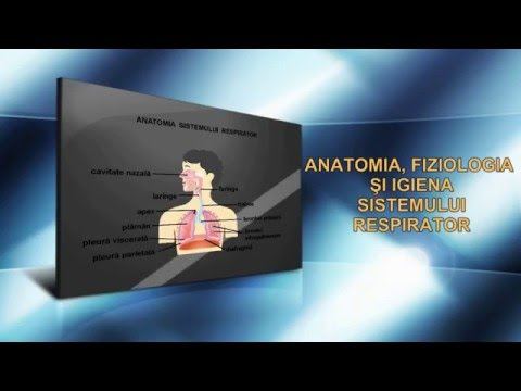Tratament articular în zander