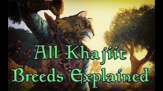 TES Lore: The 16 Breeds of Khajiit Explained!