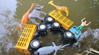 รถบรรทุกสัตว์ตกน้ำ เรือกู้ภัยให้ความช่วยเหลือ | รถของเล่น ตุ๊กตาสัตว์ของเล่น