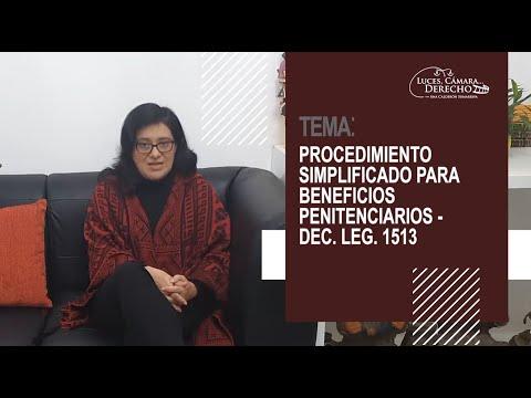 PROCEDIMIENTO SIMPLIFICADO PARA BENEFICIOS PENITENCIARIOS (DEC. LEG. 1513) - Luces Cámara Derecho 179