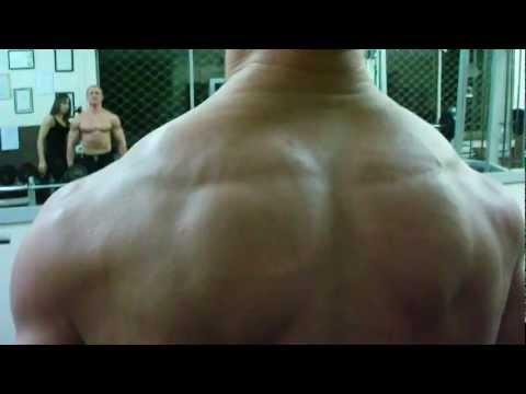 Jak organizm działa stawów kręgosłupa i mięśni Blandin Kale Germain