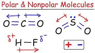 Polar and Nonpolar Molecules