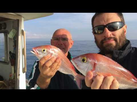 Pesca di nyazepetrovsk di video