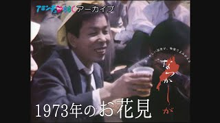 1973年 お花見【なつかしが】