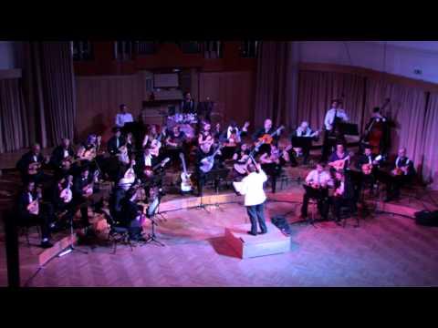 WHALE AND WASP - Alice in Chains - Orkester Mandolina Ljubljana - dir. Andrej Zupan