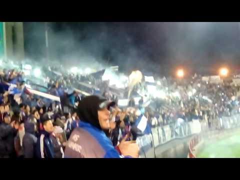 """""""La Brava Alvarado mar del plata"""" Barra: La Brava • Club: Alvarado"""