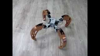 Quadruped with walking and rolling locomotion [BiLBIQ 02 - V 03 - following the robot]