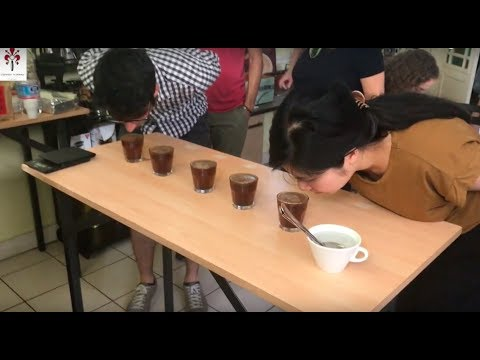 Coffee Tasting and Cupping Course ENG - Espresso Academy ...