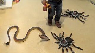 VLOG поход в детский магазин СМИК / игрушки / детская площадка
