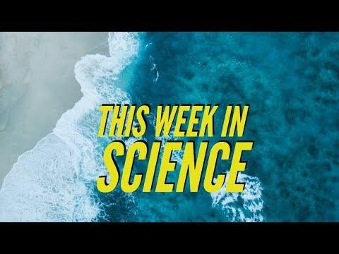 3D Replicator, Organs from stem cells, Warmer & bluer oceans – This Week in Science