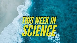 3D Replicator, Organs from stem cells, Warmer & bluer oceans – This Week in Science