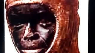 ormes gold - मुफ्त ऑनलाइन वीडियो