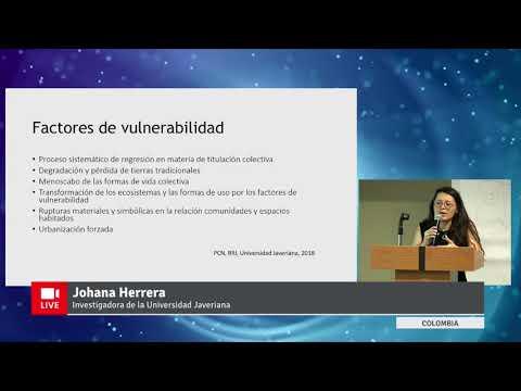 Video presentación: La experiencia colombiana del observatorio de territorios étnicos y campesinos