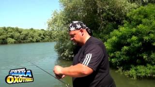 Приманки для ловли карпа на реке