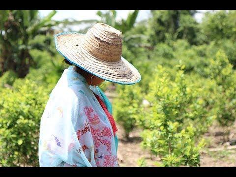 ¿Qué significa ser mujer y cultivar coca?