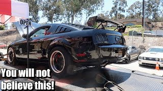 This is how much horsepower and torque my Cammed Mustang GT makes!!!