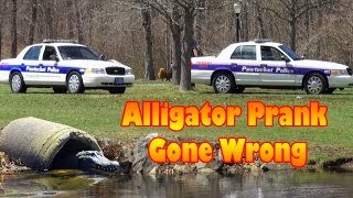 Remote Controlled Alligator Hidden Camera Prank 2014