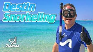 Destin Florida Snorkeling | Sea Turtles, Barracuda, Stingrays, Longnose Gar, Spadefish...